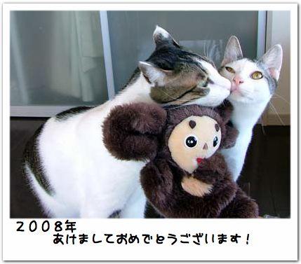 20080101_01.jpg